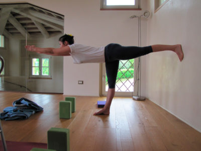 yoga integrated method loris de martin